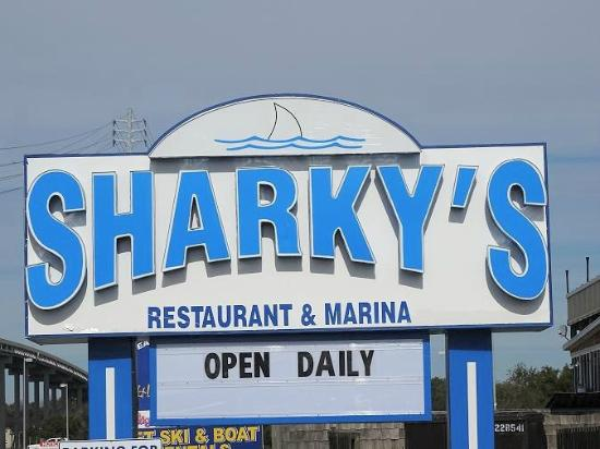 Sharky's: sign on road