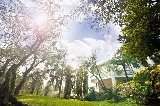Hotel Villa Orizzonte : il parco giardino