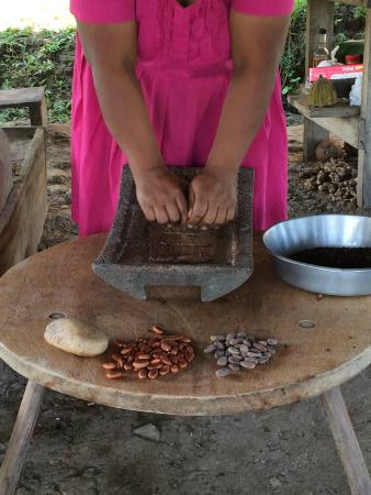 Agouti Cacao Farm: Adalia grinding the cacao beans on the Metate stone with the mano handle.