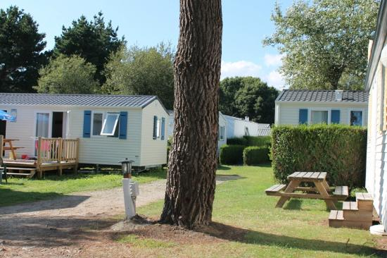 Camping l'Evasion : vue mobil-home