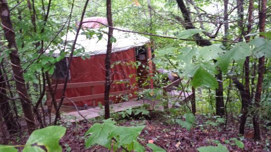 Cedar House Inn & Yurts: Yurt