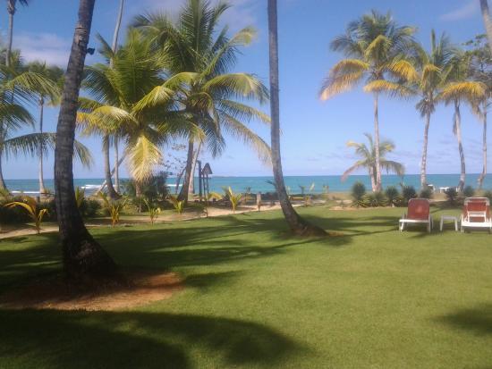 Casa Grande Beach Hotel : jardin privatif donnant sur la plage