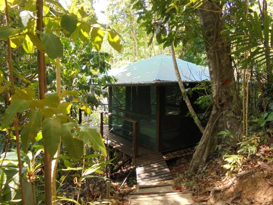 Dunk Island Holidays: Featured Pictures Of Mission Beach