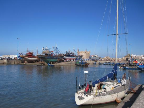 Krikich Day Tours: Harbour at Essaouira