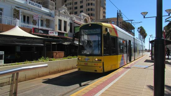 Franklin Central Apartments: Trams - easy way to see the city!