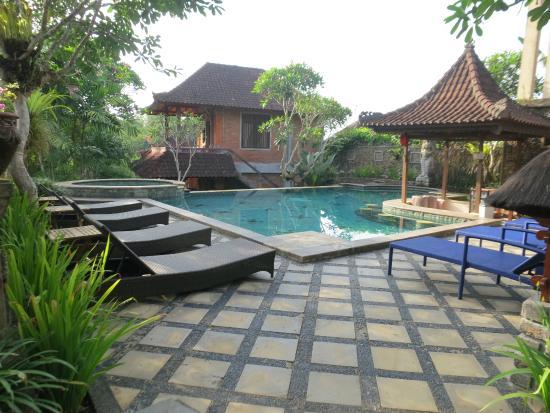 Ubud Bungalow: The pool