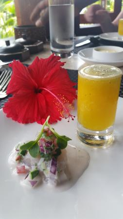 Likuliku Lagoon Resort: appetizer
