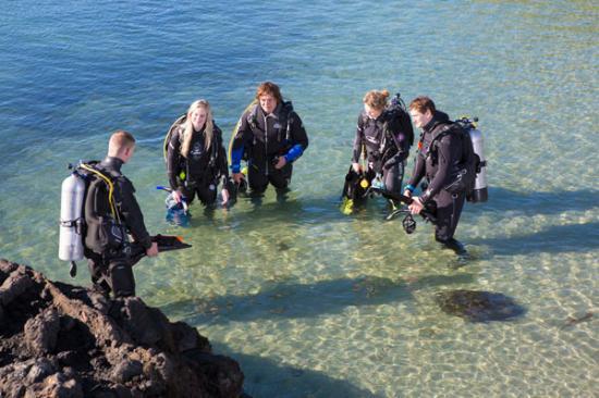 Dive Otago