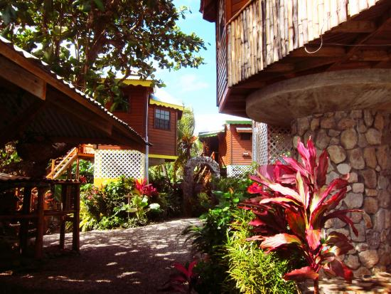 POZ Restaurant & Bar at Calibishie Gardens : The view into the land of Poz from the restaurant.