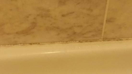 Beau Rivage Resort & Casino Biloxi: mold along bottom of shower - shown to manager
