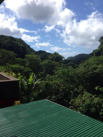 Papillote Tropical Gardens : View from open air restaurant