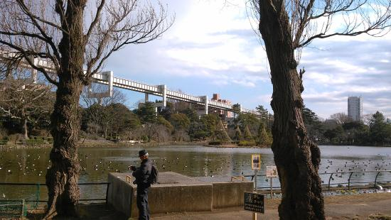Chiba Park: Monorail tracks over the lake
