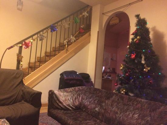 Penthouse Hotel & Hostel : Новогодний холл