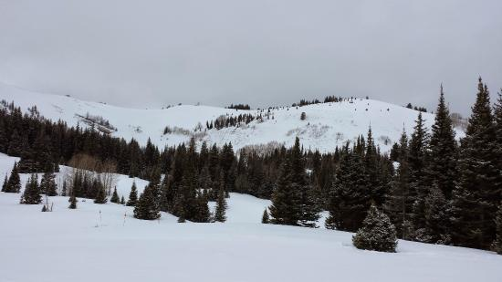 Red Pine Adventures: Near the top of the mountain.