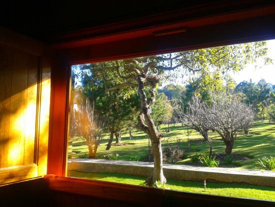 Hotel Huerta Real: linda vista