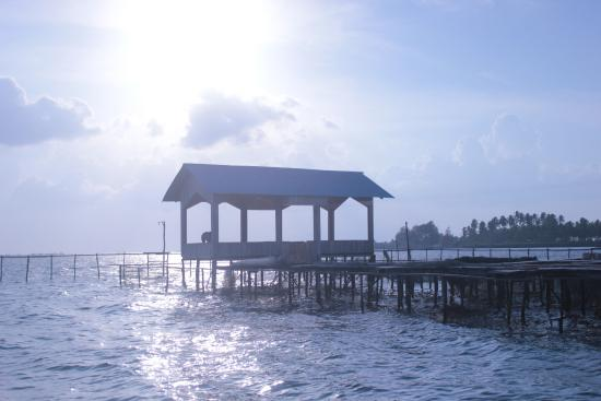 Osi Island