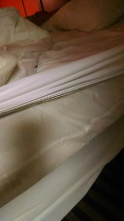 Days Inn Louisville Central University & Expo Center: only mattress cover was plastic and a thin sheet