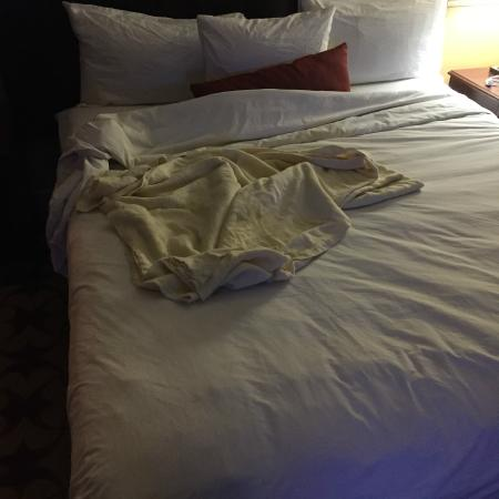 """Roberts Riverwalk Hotel: The """"blanket"""" I was provided to sleep in the 48 degree room."""