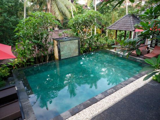 Igna Bungalows: Pool from our balconey