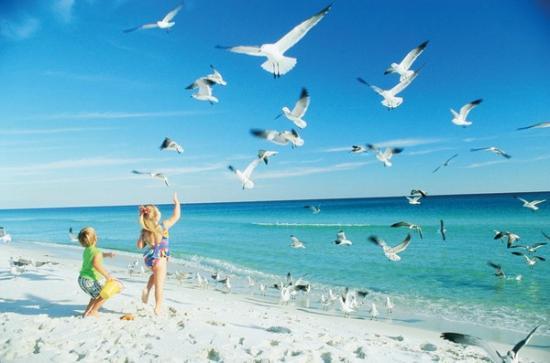 South Seas Family Resort Myrtle Beach