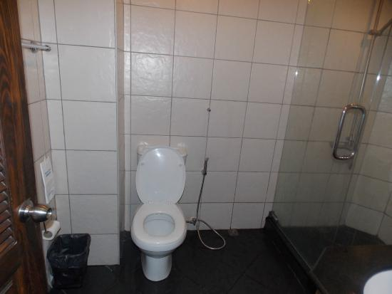 Queen Victoria Inn: bathroom