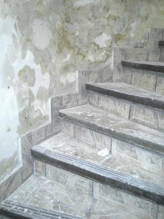 Hipotel Paris Montmartre: escalier sale et glissant