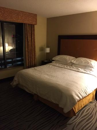 Embassy Suites by Hilton Nashville at Vanderbilt: bedroom