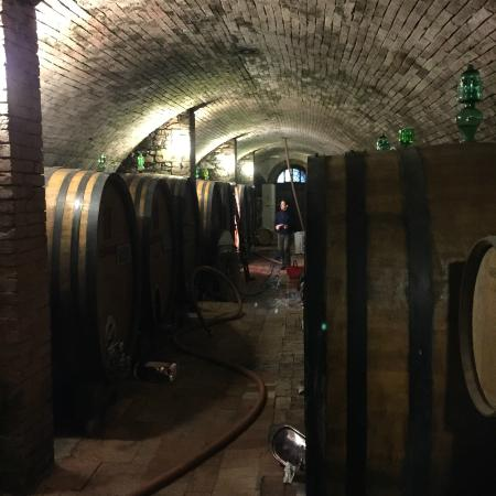 Florence Wine Academy: caves of wine