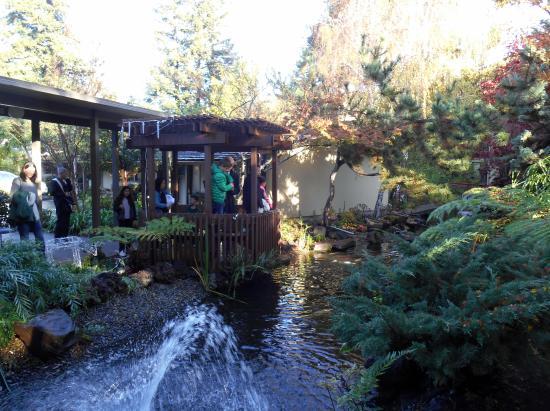 Canales Picture Of Dinah 39 S Garden Hotel Palo Alto Tripadvisor