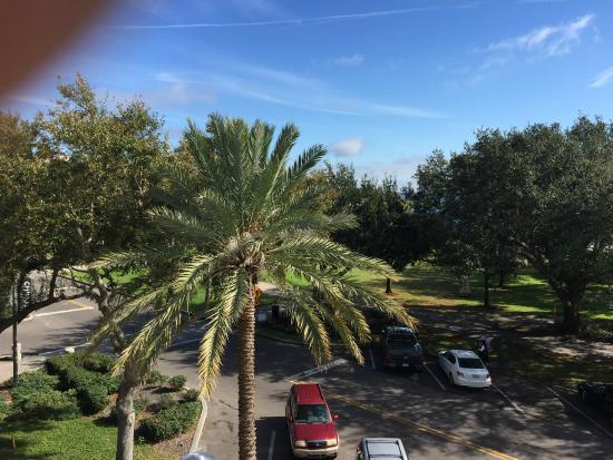 The Birchwood: Hotel View