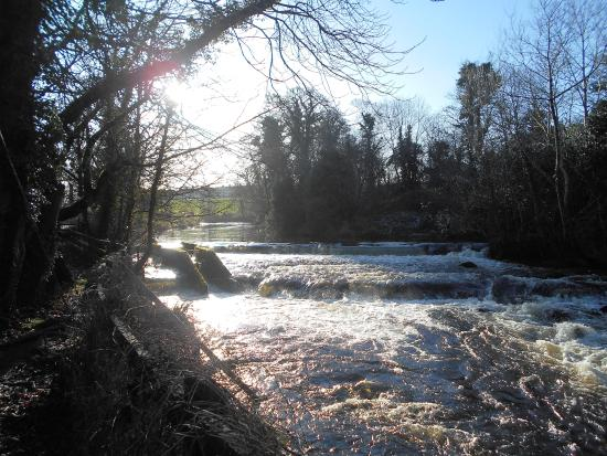 Twin Trees Hotel: River by the entrance to the hotel
