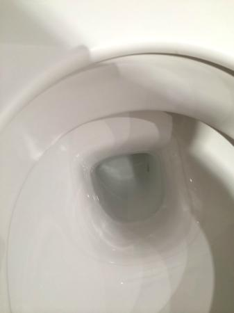 Hilton Garden Inn Vienna South: The uncleaned toilet bowl with brown/beige line