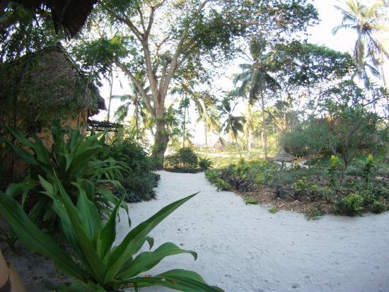 Kinasi Lodge: Hotel grounds