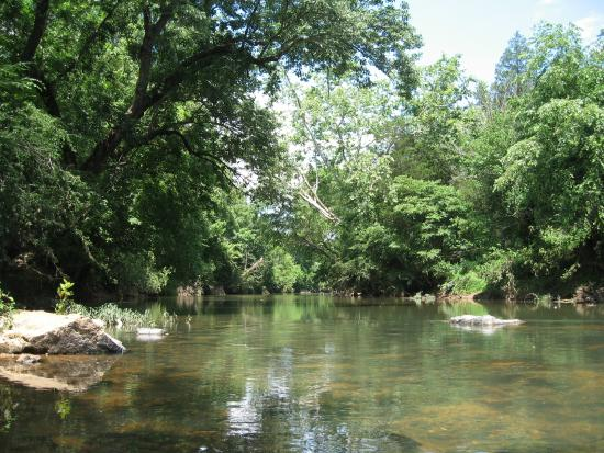 Rapidan River Kayak Company: The tranquil Rapidan River.