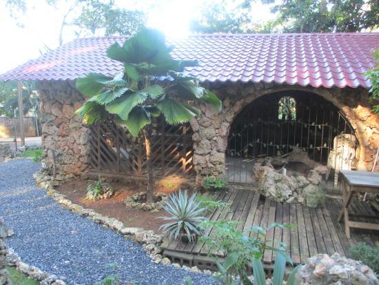 The Colibri Hill Resort Foto