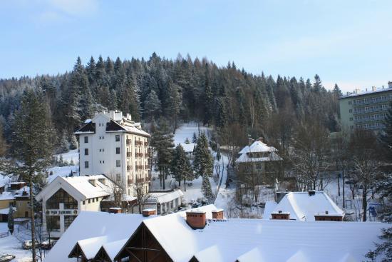 Mercure Krynica Zdroj Resort & Spa: Вид на окрестности из номера