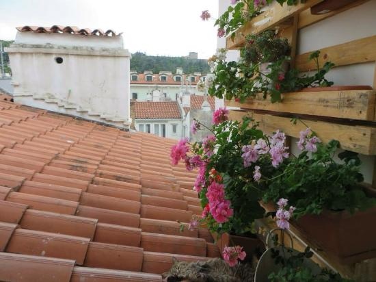 B&B Tra i Tetti: Among the roofs