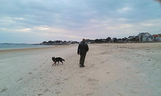Hotel Les Rochers : Carnac beach - on your doorstep