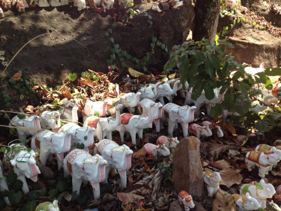 Ban Fang, Thailand: elephants