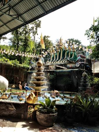 Khon Kaen, Thailand: Waterfalls and Payanak