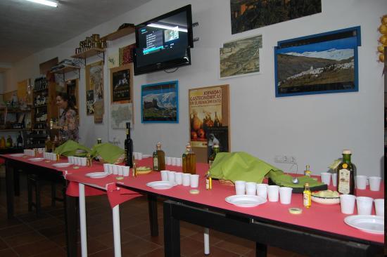 Olive Oil Tour: Tasting of liquid gold