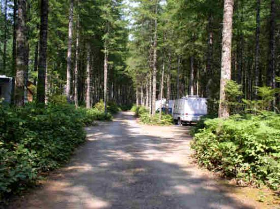 Parkside Campground Vancouver Island