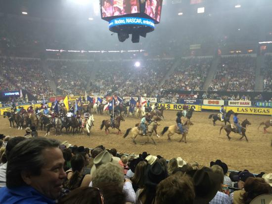 National Rodeo : Introducing the Cowgirls & Cowboys