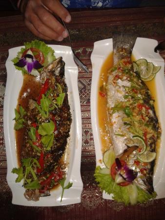 Green Chilli Restaurant: Delicious fresh fish (Thai style)