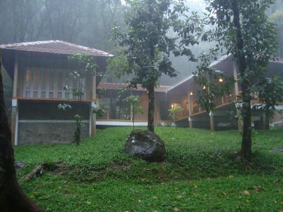Lantern Stay: Lanternstay in a rainy day
