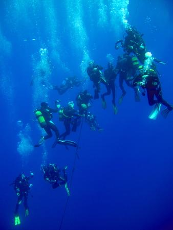 Alpha Diving Center