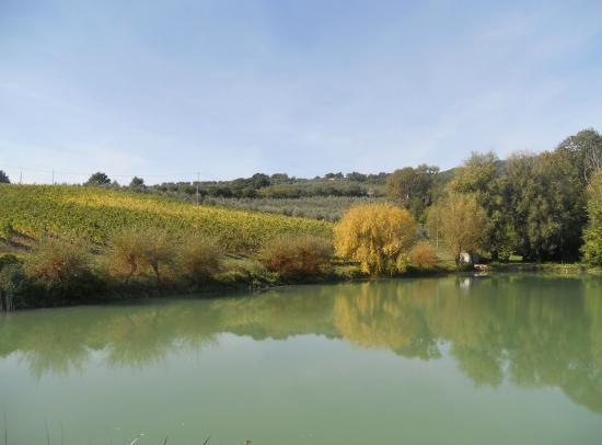 Agriturismo I Granai: Lago