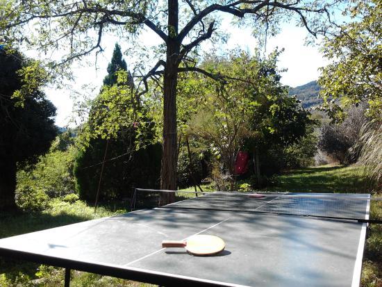 Agriturismo I Granai: Ping pong