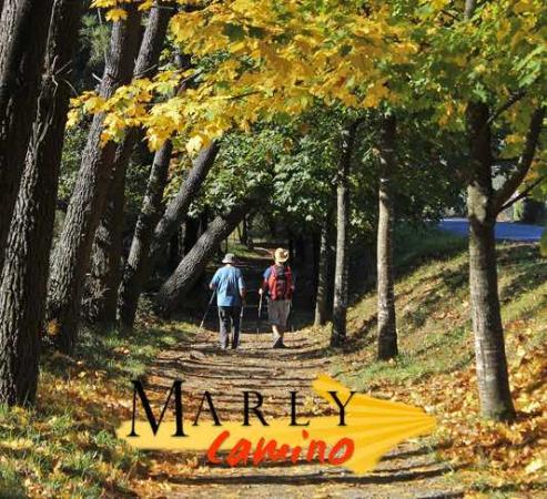 Marly Camino