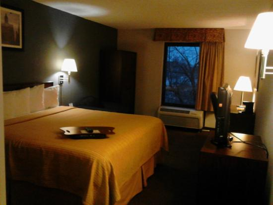 BEST WESTERN O'Hare/Elk Grove Village Hotel: Room 336